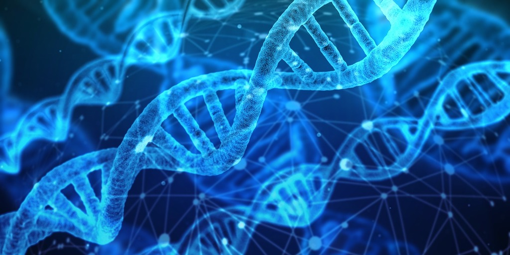 mind body connection and DNA