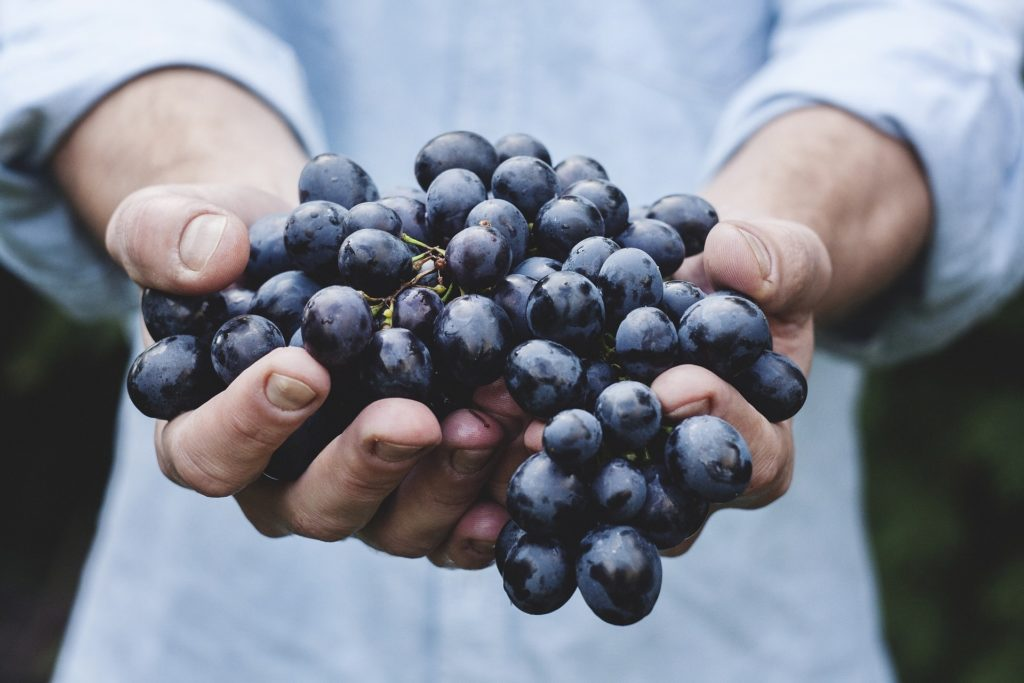health and skin benefits of grapes