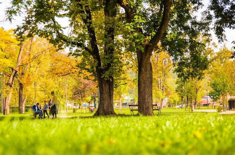 park setting with fall leaves and people sitting on a bench, high cortisol and weight gain