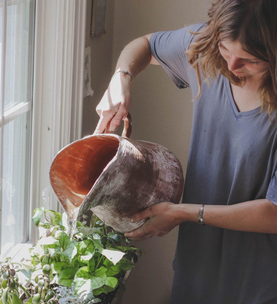 plant-an-indoor-garden